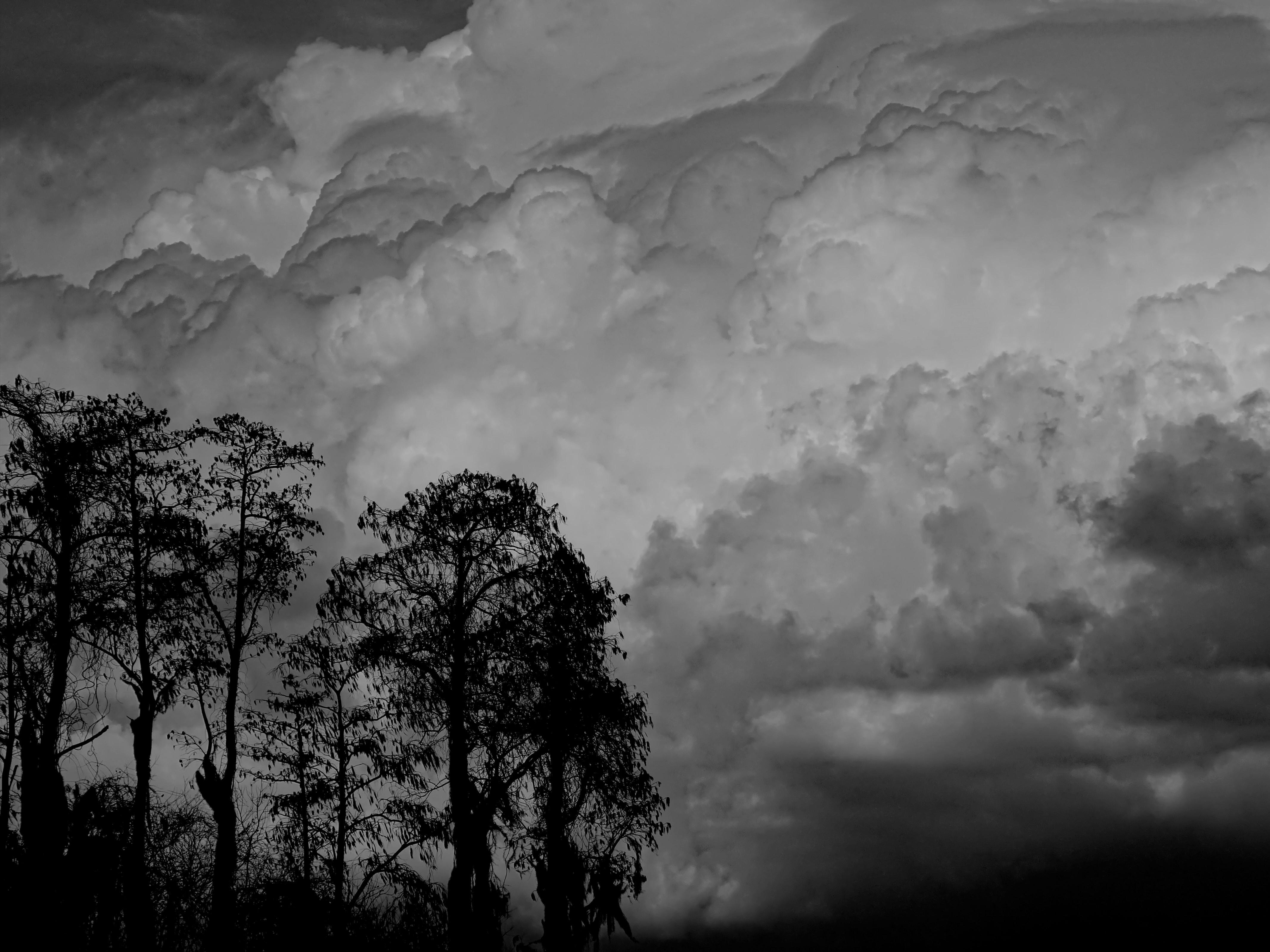008 (4) B&W clouds.jpg