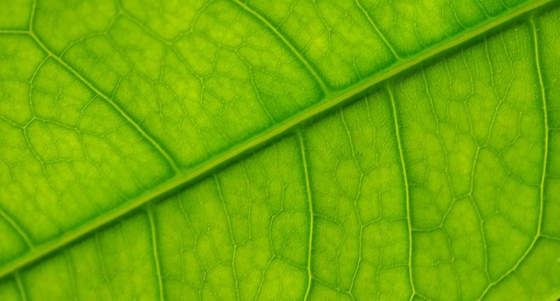 180420_Textures_1609_web.jpg