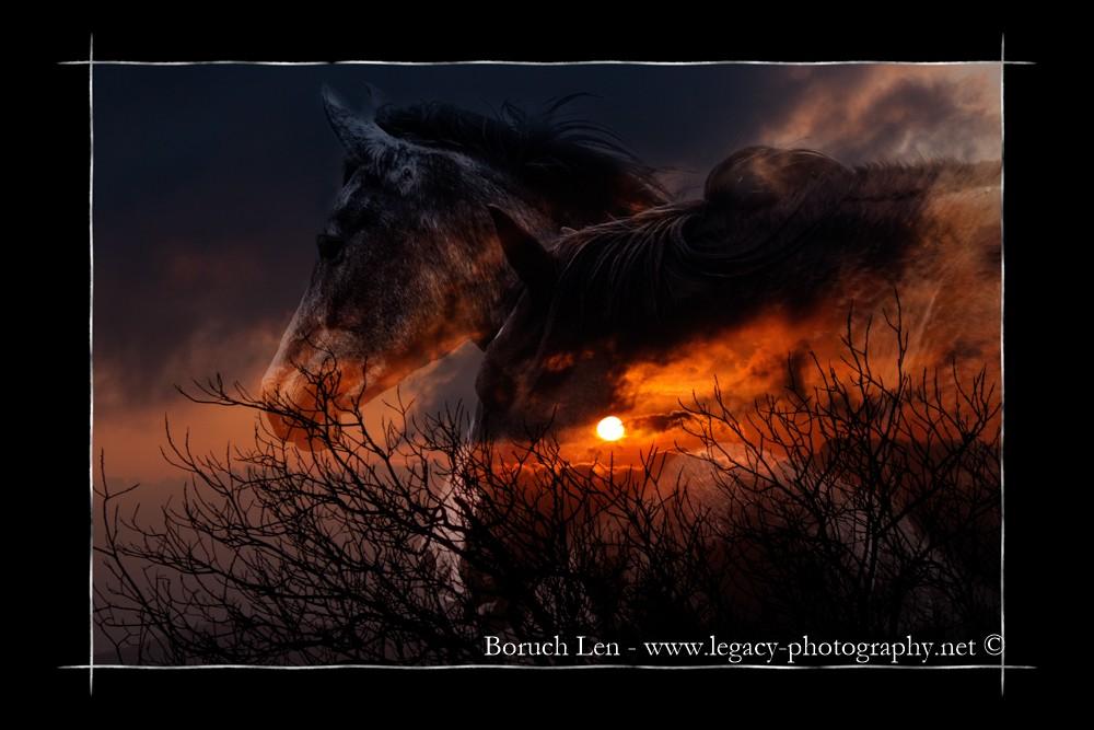 2 horse heads on sunset over Har Bental plus border.jpg