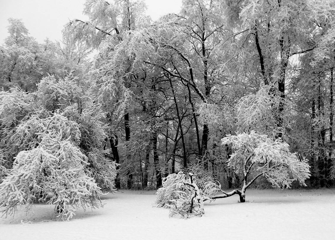 A mantel of white.jpg