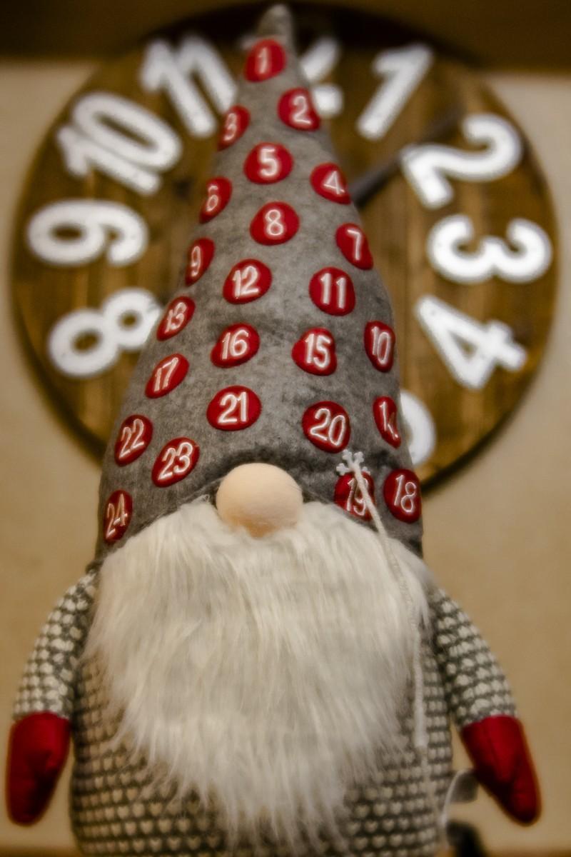 Advent Gnome.jpg