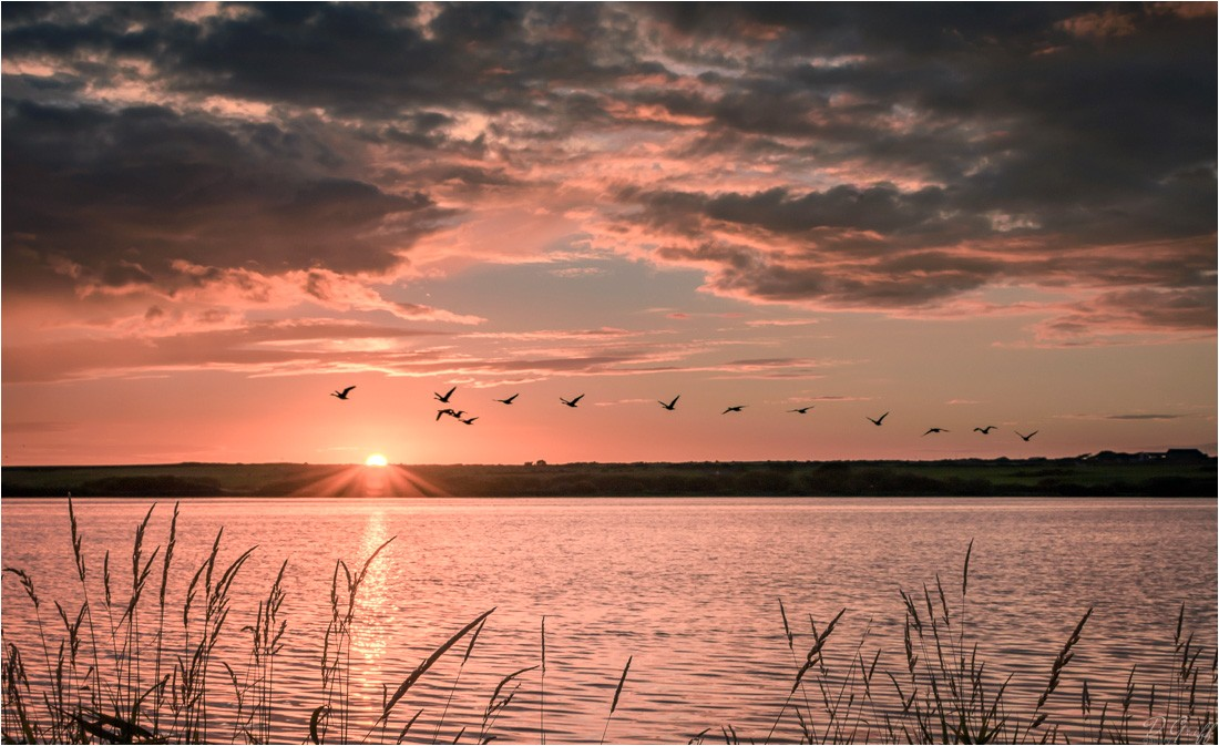 An Anglesey Sunset by David Griffiths.jpg