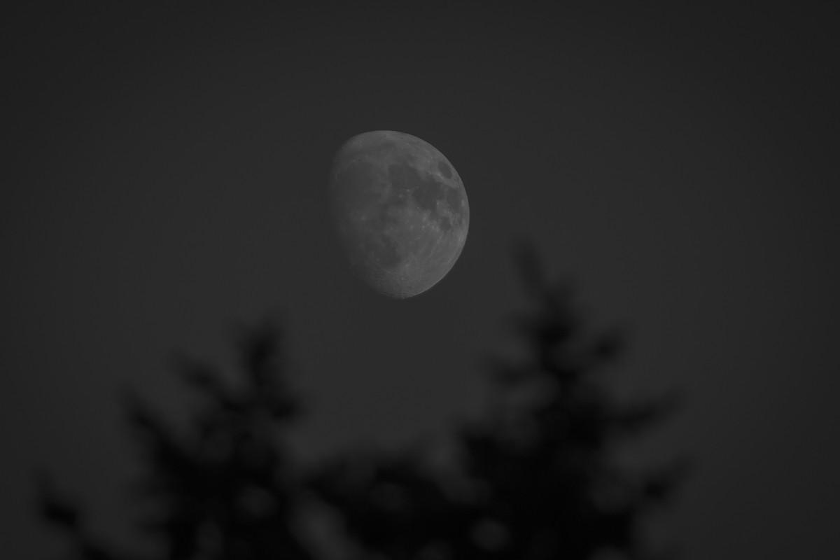 B&W Moon.JPG