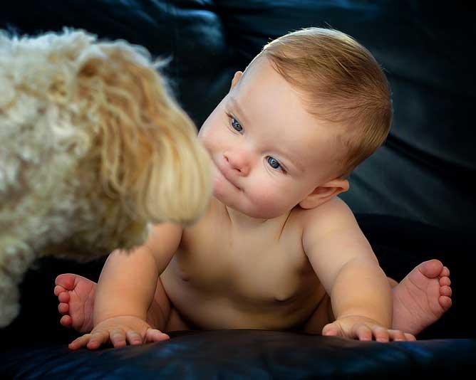 babydog.jpg