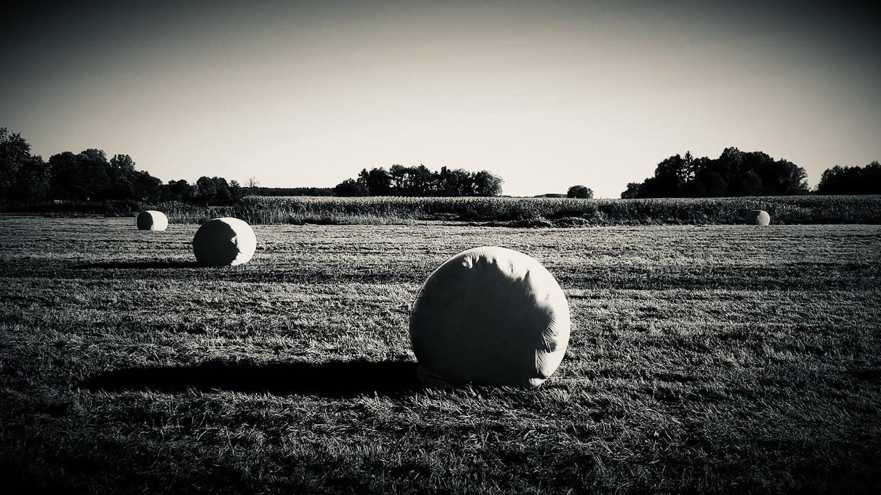 bales silvertone - 1.jpeg