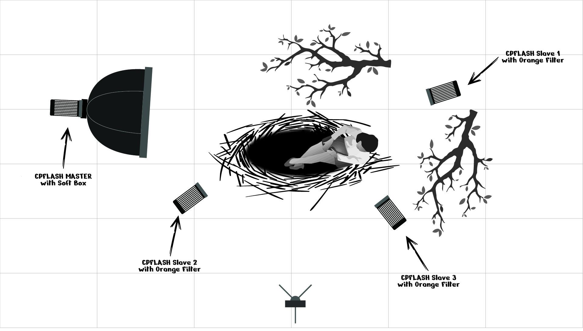 Big Nest Diagram.jpg