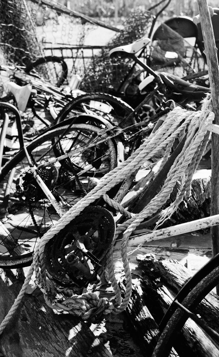 Bikes on the east side (3).jpg