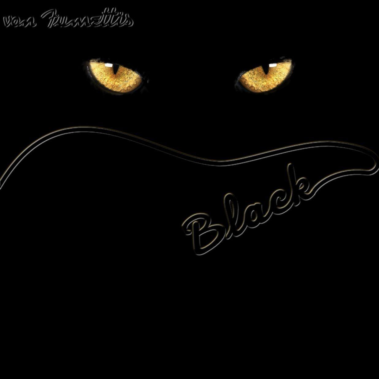 black lp 2.jpg