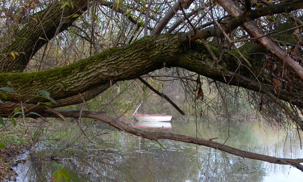 boat on autobahnsee.jpg