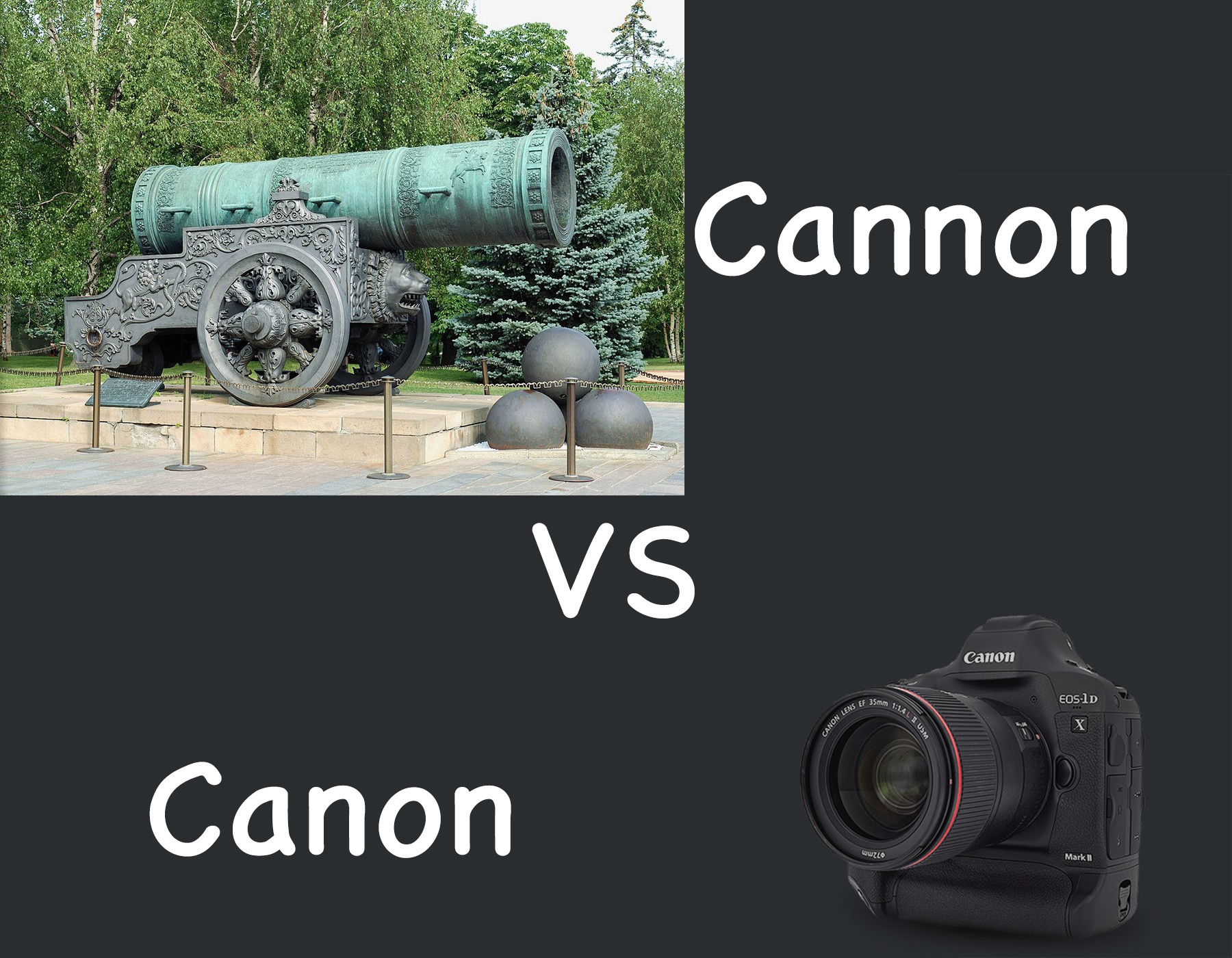 Cannon vs Canon.jpg