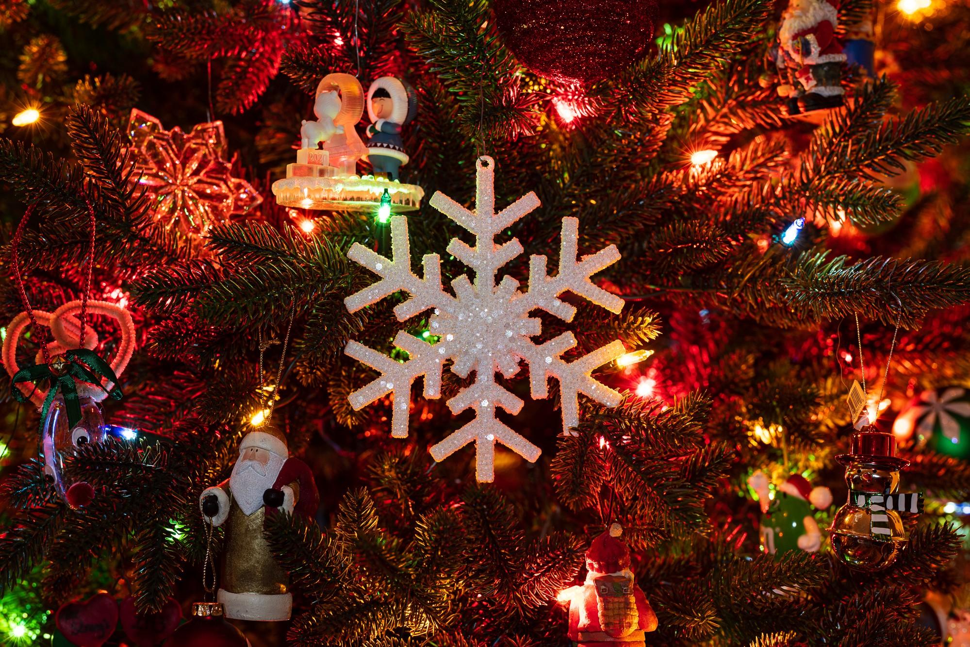 Christmas Tree Snowflake 2000x1333.jpg