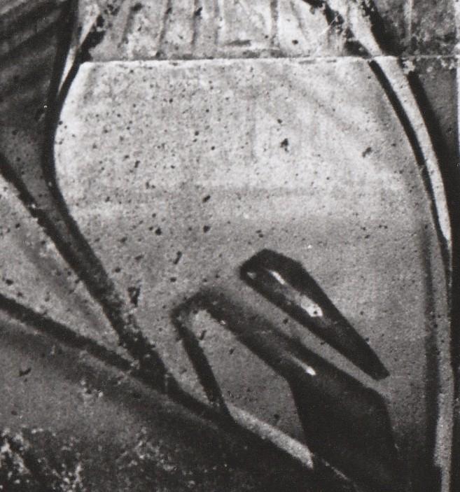 cut1.jpg