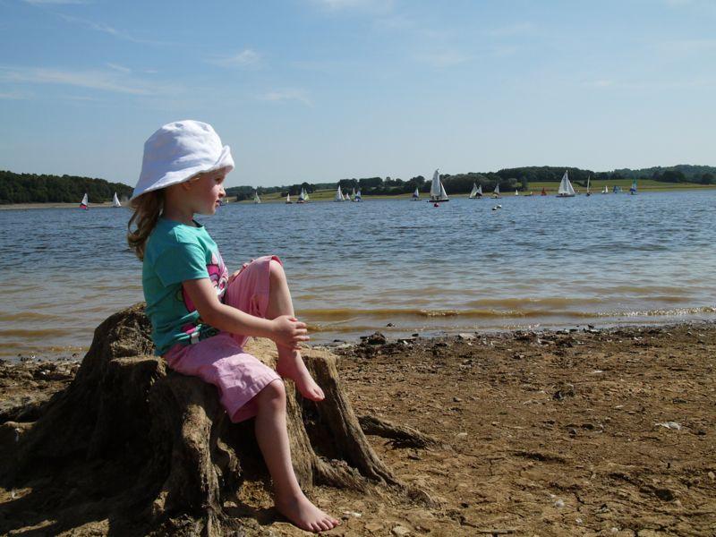 Daisy lake 1.jpg