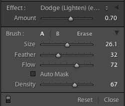Dodge tool settings.jpg