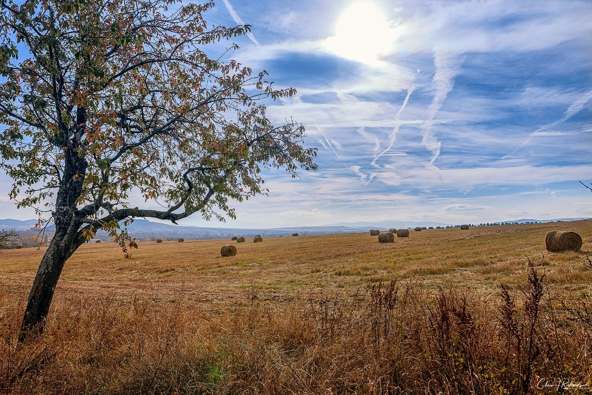 Erma_Landscape.jpg