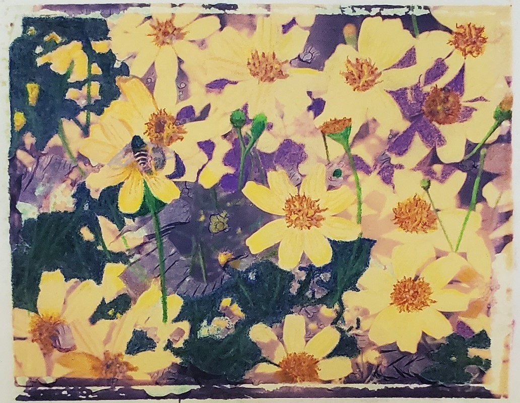 Flowers and bee image transfer.jpg