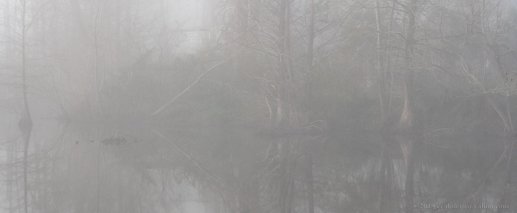 fogbound-sunrise-pano.jpg