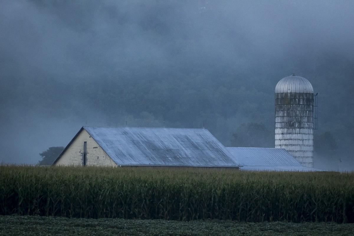 Foggy Morning on the Farm.JPG