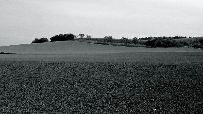 hillock in bw 2.jpg