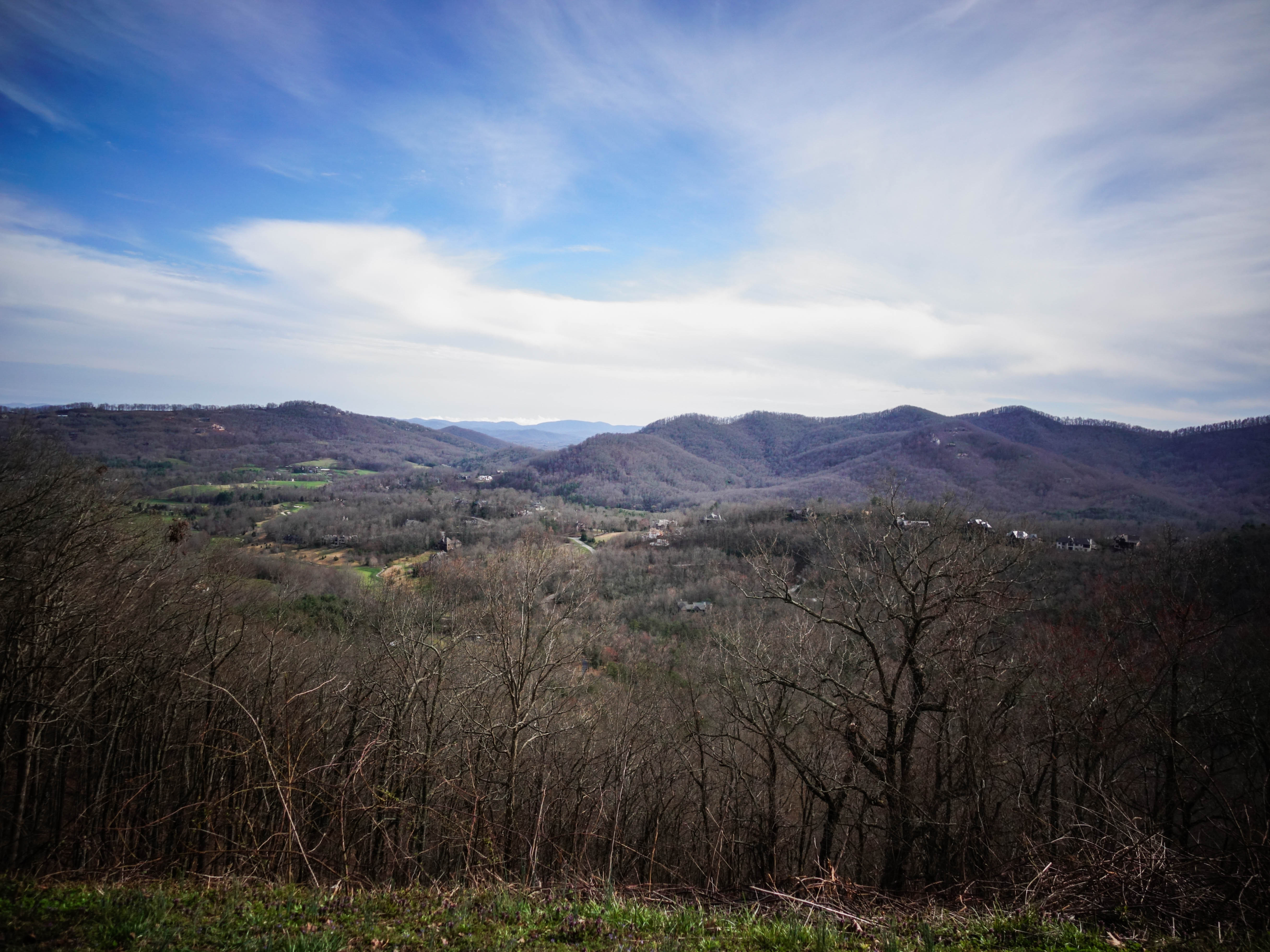 Lovely scene from a Blue Ridge lookout.jpg