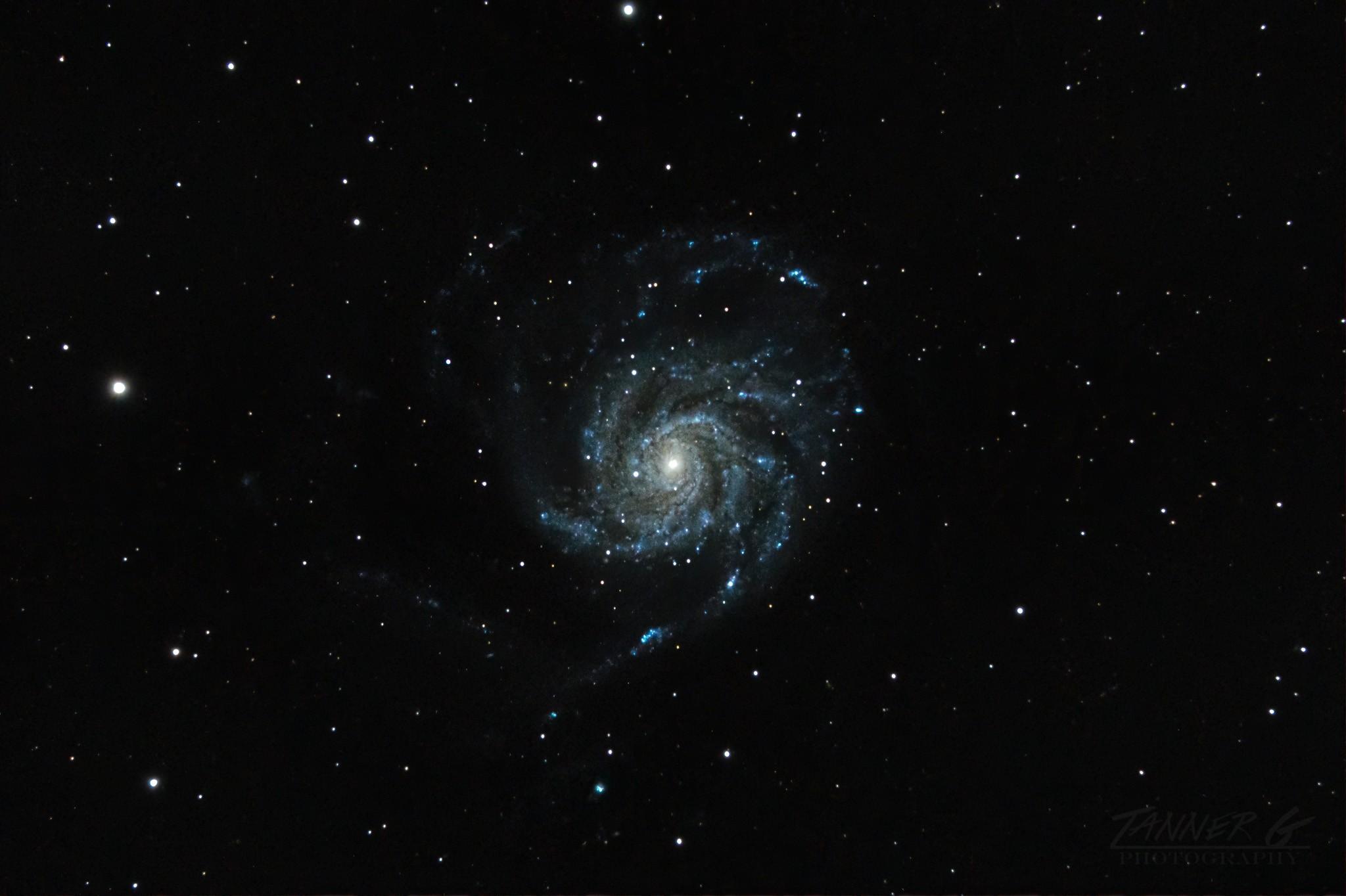 M101 May 2020-1.jpg