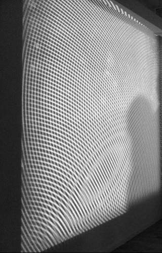 Moire_2012_Photo_1~01.jpg