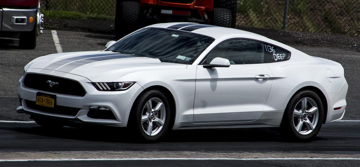Mustang 1200.JPG
