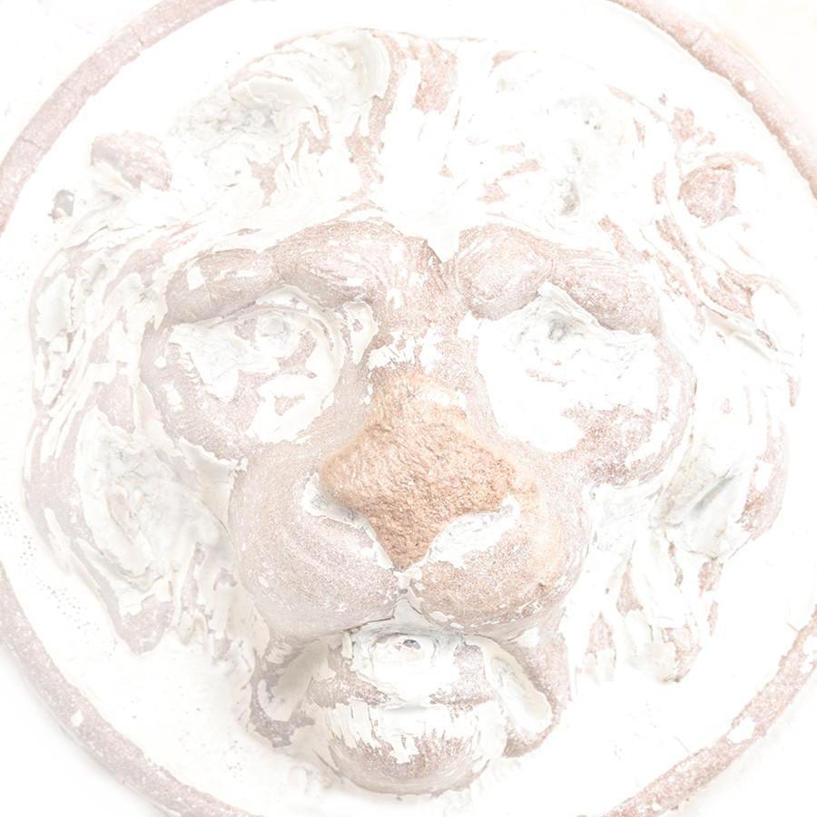 o lion esp 102414.jpg