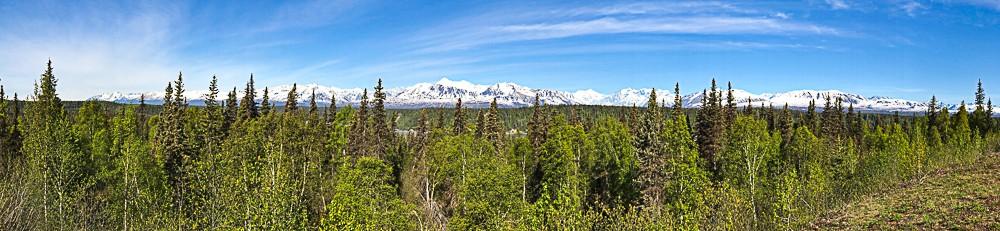 panoramic Denali.jpg