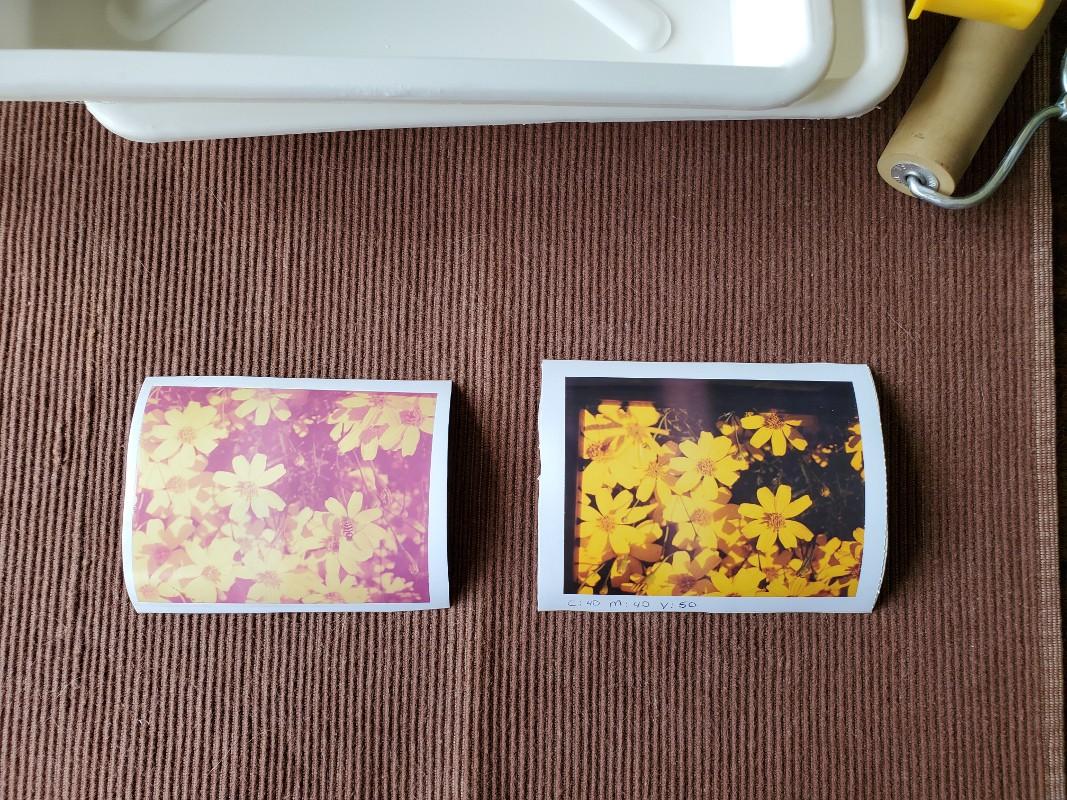 Polaroid Type 79, 4x5 prints.jpg