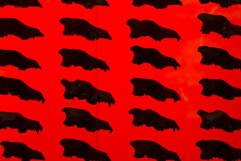 red skulls.jpg