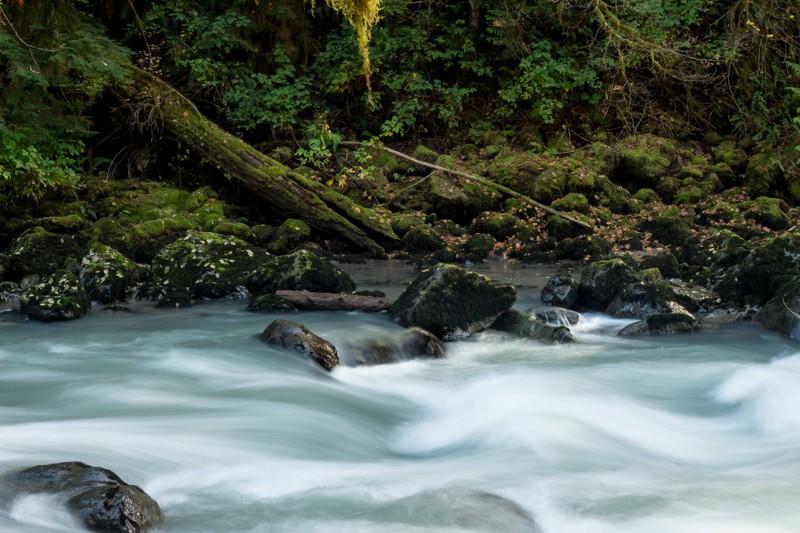 river runs.jpg