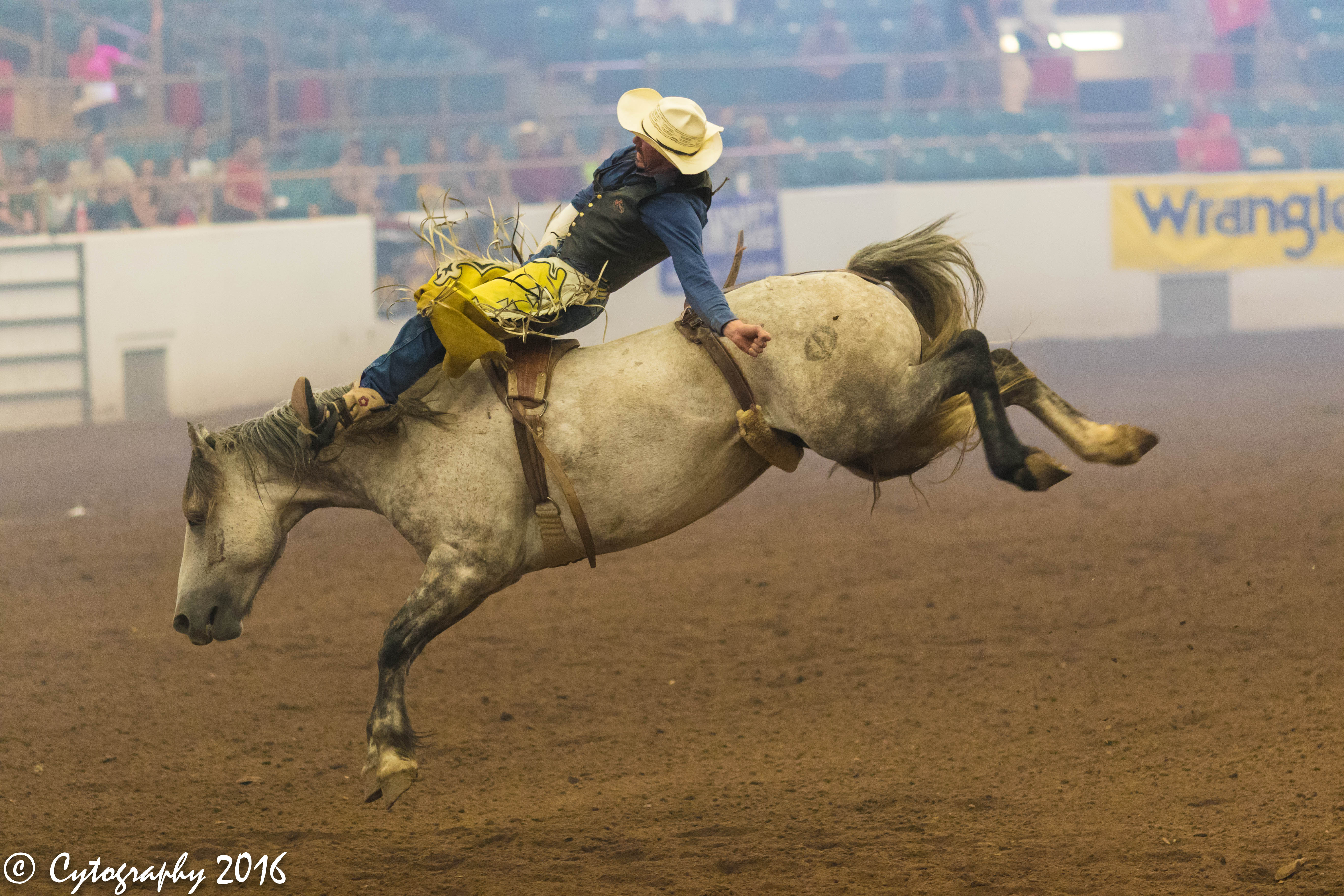 Rodeo2017-1.jpg