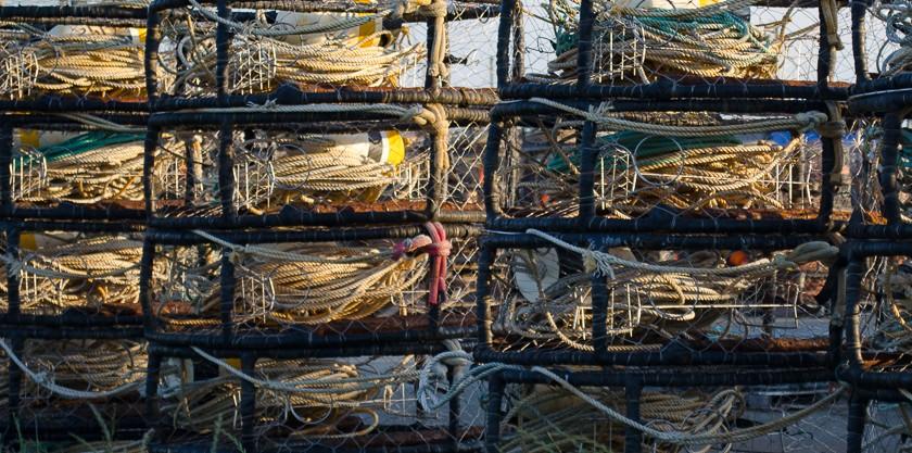 rope-1.jpg
