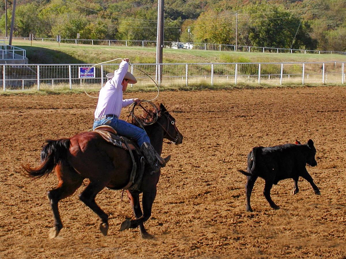 Roping-October 2008.jpg