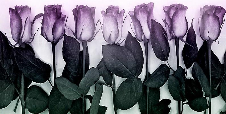 rose-tiles bwtsz.jpg