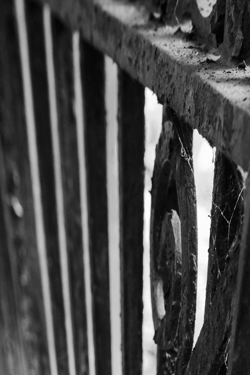 Rusty Fence.jpg