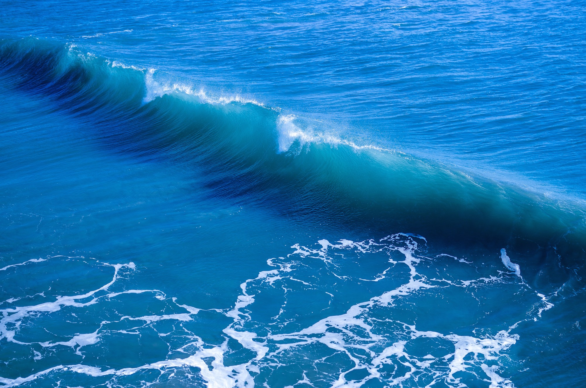 Single wave.jpg