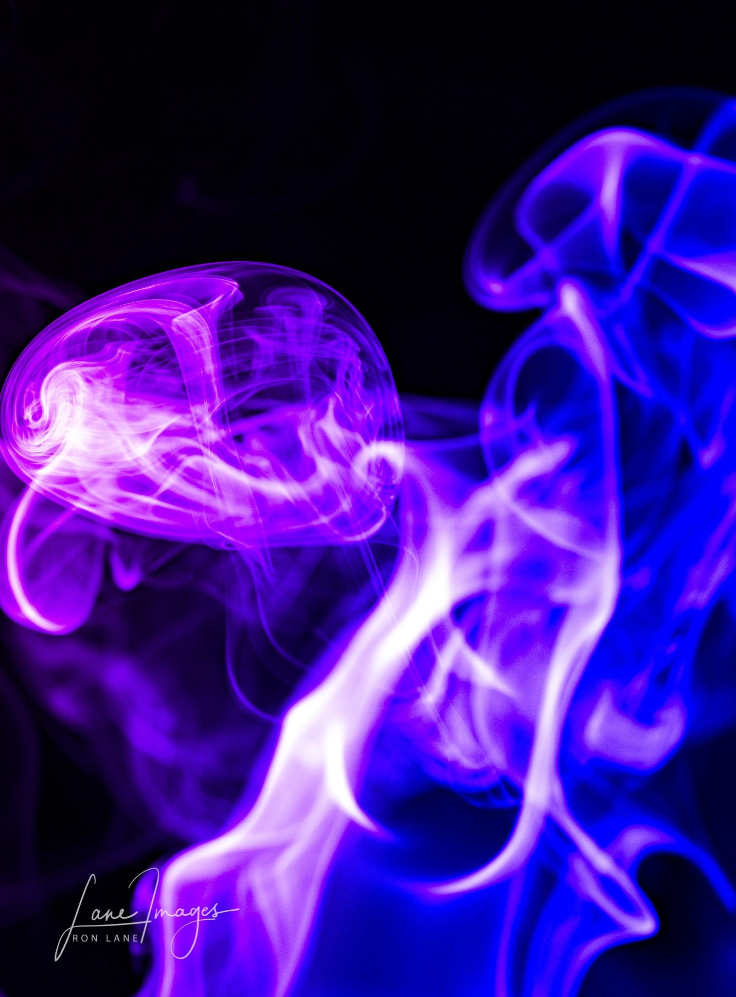 smoke-277-Edit.jpg