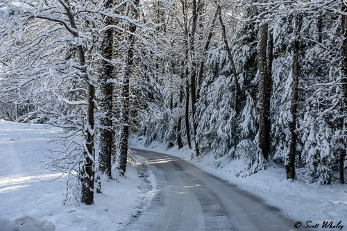 Snow In Cades Cove (10 of 83).jpg