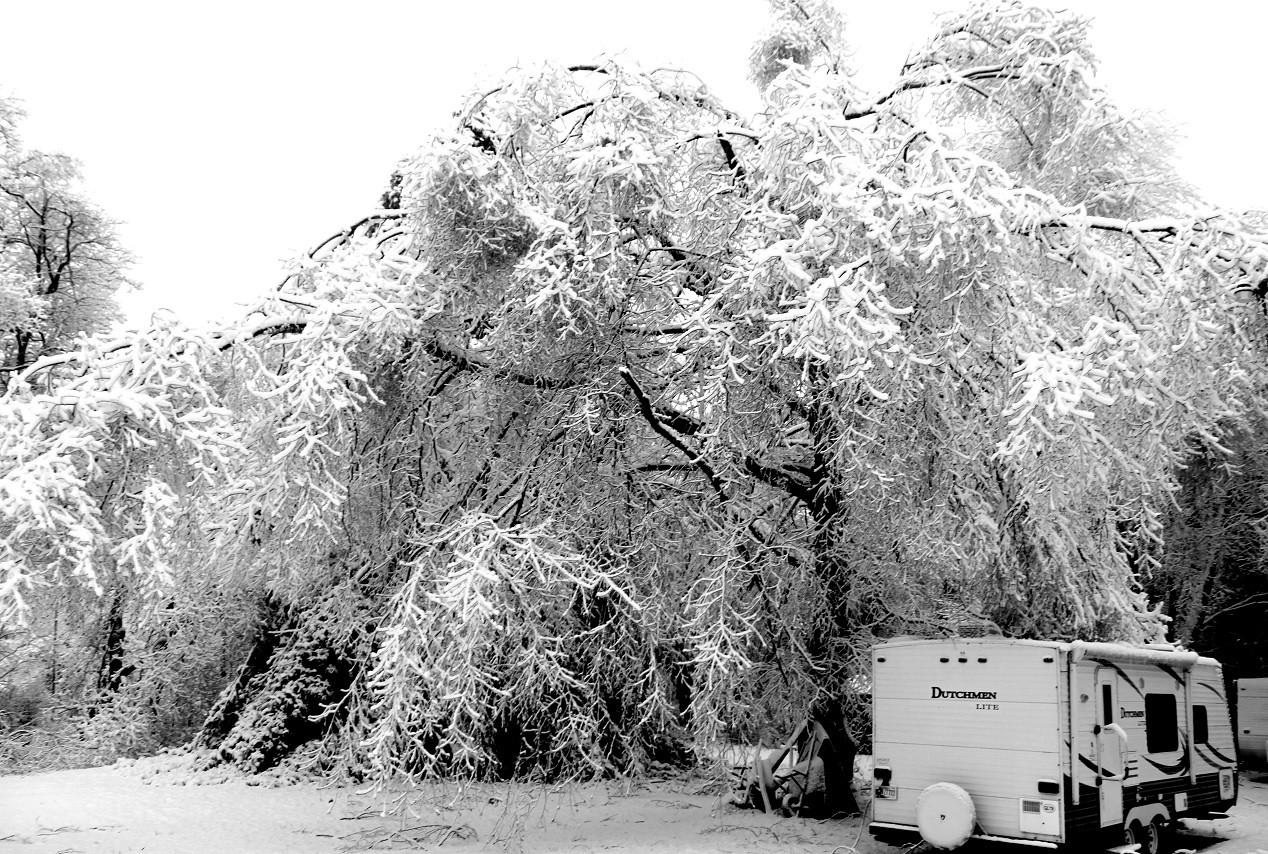 snow monster 2.JPG