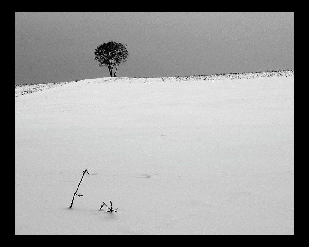 snowbound 3 frame.jpg