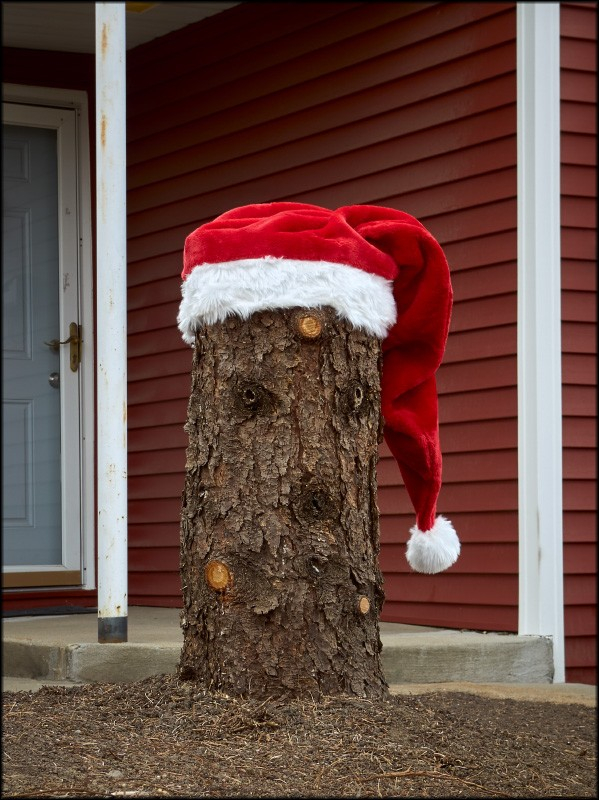 stumpy_santa.jpg