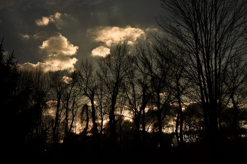 sun set 016.JPG