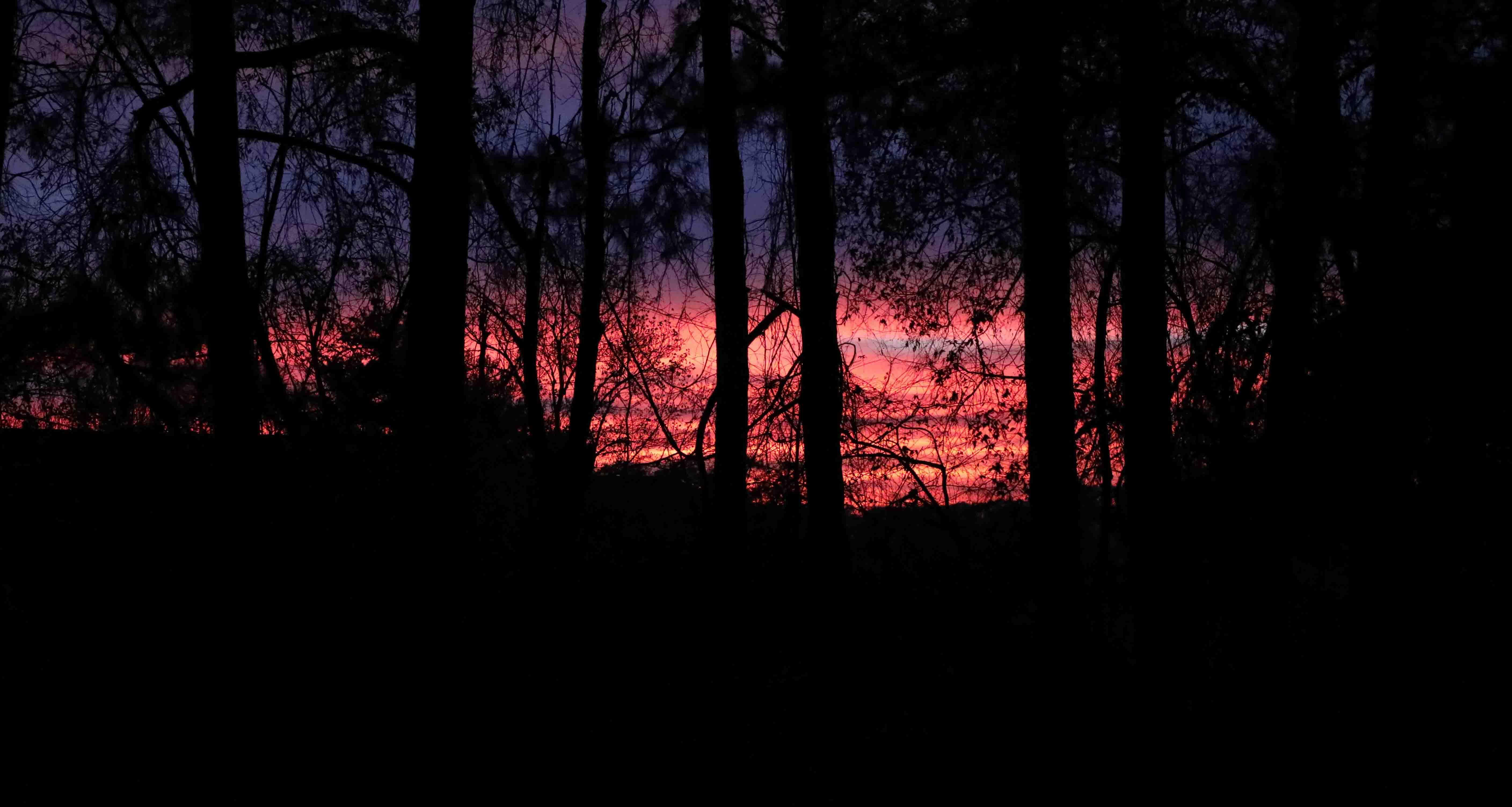 Sunrise On Suburban Hills (1 of 1)-3.jpg