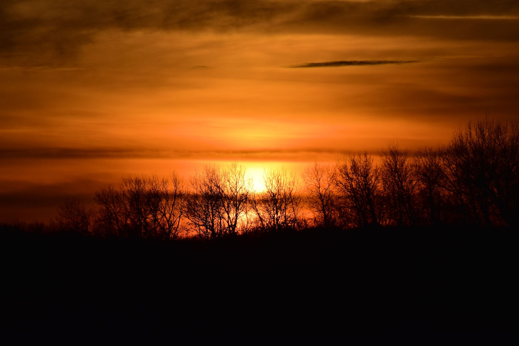 sunsetDSC_0538.jpg