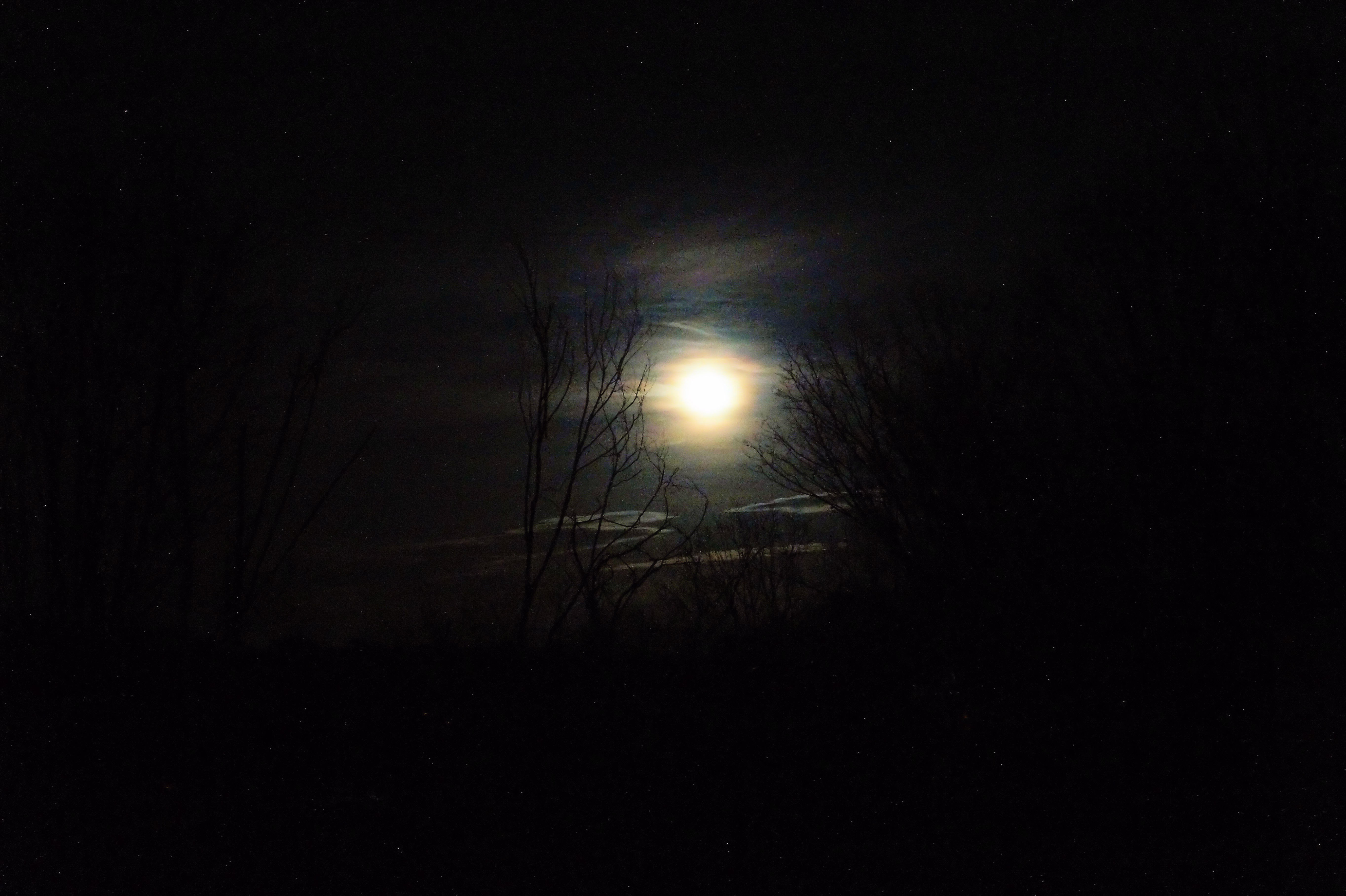 Thanksgiving moon..jpg