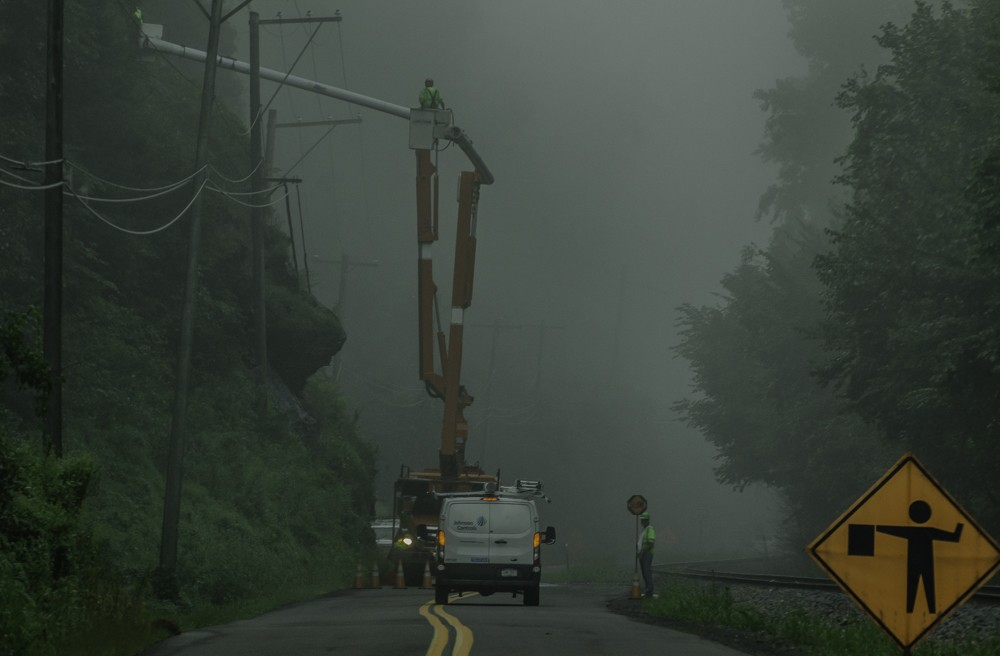 Trimming Trees in the Early Morning Fog.jpg