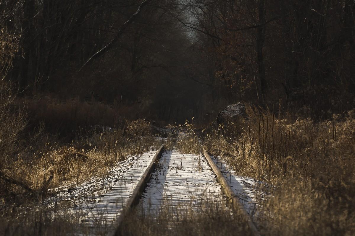 Winter Scene 2.JPG
