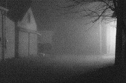 Fog Alley resize.jpg
